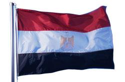 steag egipt