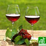 Vinul moldovenesc, acces liber pe piaţa UE de la 1 ianuarie 2014