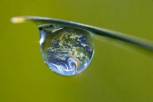 ziua internationala a mediului
