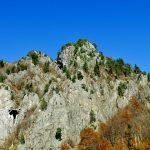 Comisia solicită României şi Ungariei să asigure protecţia propriilor habitate sălbatice