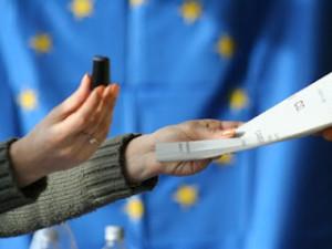 vot-referendum6