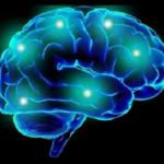 Studiu: Orientarea politică se află în creier