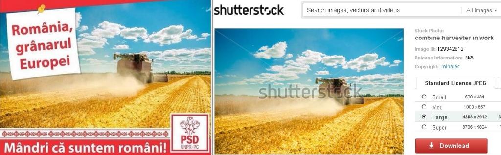 Afis PSD shutterstock