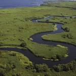 "Text superb despre Delta Dunării, în ""New York Times"""