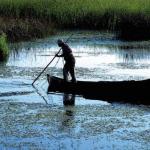 Peste 1 miliard de euro, fonduri europene, pentru comunităţile izolate din Delta Dunării