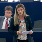 Romanian MEP Ramona Mănescu (EPP, PNL): Europe could tackle the refugee crisis only if it would approach the causes and its sources, not just the effects