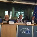 Eurodeputatul S&D, Viorica Dăncilă: Noul Fond European Agricol pentru Dezvoltare Rurală, mai flexibil în a răspunde nevoilor teritoriale specifice