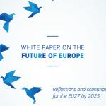 Cartea albă privind viitorul Europei. Dezbatere cu societatea civilă din România organizată de Comitetul Economic și Social European, 29 mai