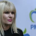 Alegeri europarlamentare 2014. Udrea: Nu am apucat să vorbesc cu Elena Băsescu despre o eventuală candidatură la PE din partea PMP