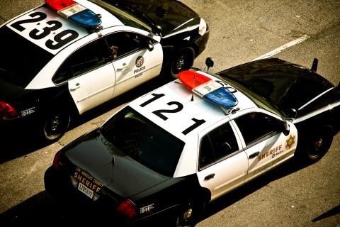 LAPD wikipedia