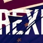 Regele Țărilor de Jos, Willem-Alexander, despre Brexit: Buchetul european nu ar fi complet fără trandafirul englezesc