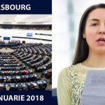 Eurodeputatul Claudia Țapardel (PSD, S&D): Voi cere mai mult sprijin din partea Comisiei Europene și fonduri suplimentare pentru macroregiunea Dunării