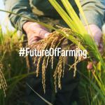 Viziunea PPE, cel mai mare partid european, privind politica agricolă comună (PAC) post-Brexit: Apărarea fermierilor și a consumatorilor