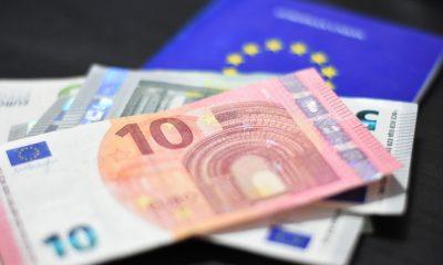 euro bani moneda